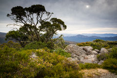 View from Mount William. Grampians National Park, Victoria, Australia Stock Photo