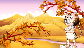 View of the mountain during autumn Royalty Free Stock Photo