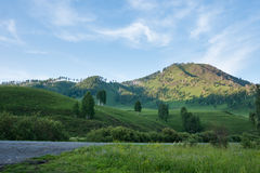 View of the mountain. Chuiski. Trekking in the Altai Mountains Stock Images