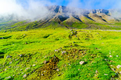View of mountain and green field of Iceland Stock Photos