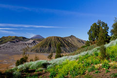 View of a mountain at Jawa Indonesia Stock Image