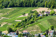 View from Mountain Lagern to Wettingen. View from Mountain Lagern to the village of Wettingen at day on July 21, 2015. Wettingen is a municipality in the Swiss Royalty Free Stock Images
