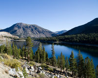 View on the mountain lake. Lake in Yosemite Valley surrounded by trees Royalty Free Stock Photography