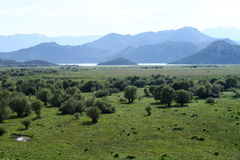 The view from the mountain lake Skadar. Montenegro. Skadar lake, view from a height Stock Photo