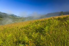 View of the mountain landscape with fog Royalty Free Stock Images