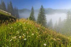 View of the mountain landscape with fog Stock Photo
