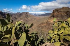 View of the mountain landscape from viewpoint Degollada de Las Yeguas. Cactus in the foreground. Gran Canaria in Spain. View of the mountain landscape with royalty free stock photography