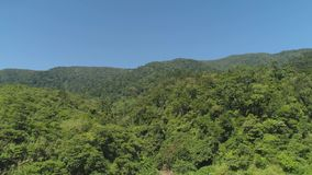 View of mountain landscape with rainforest. Aerial view of mountains with green forest, trees, jungle with blue sky. Slopes of mountains with tropical stock video footage