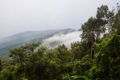 A view of mountain layer with fog spread over the tropical rain forest. royalty free stock photography