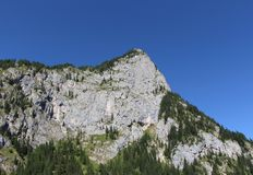 Mountain massif, green forest and blue sky. Royalty Free Stock Photography