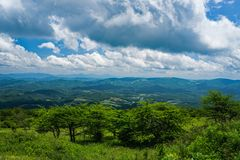 View From a Mountain Meadow on Top Whitetop Mountain, Grayson County, Virginia, USA. View from a Mountain Meadow with Mountains in the background from the Top of royalty free stock image