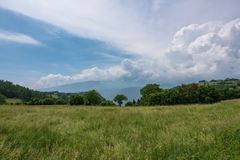 View of the mountain meadow. View of the mountain meadow on a Sunny summer day. Veneto, Italy royalty free stock photography