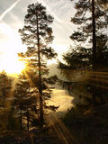 View from the Mountain into the Morning Sun Stock Image