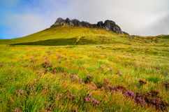 View of mountain peak Stack Pollaidh, Scotland Stock Images