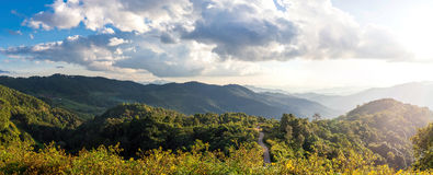 View of mountain peaks, coniferous tropical forest. Panorama. View of mountain peaks, coniferous tropical forest and green meadow in summer landscape. Sunset in Stock Image