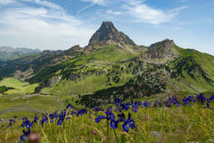 View of the Pic du Midi d`Ossau in the French Pyrenees Stock Image