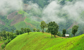 View of the mountain in Pua district Royalty Free Stock Photography