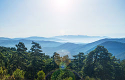View of mountain range and forest in morning sun Stock Photos