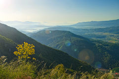 View of mountain range and plants in morning sunlight Stock Images