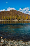 View of the mountain and river in the fall Stock Image