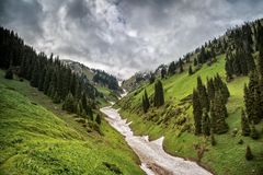 Snow from the avalanches in the gorge. View of a mountain river in the gorge with snow from the avalanches stock photography