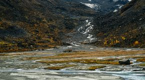 River from glacier on mountain Belukha. A view of the mountain stream descended from the mountain Belukha stock photo