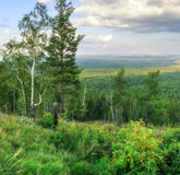 View from Mountain Sugomak, Southern Urals, soft filter Royalty Free Stock Images