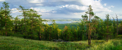 View from Mountain Sugomak, Southern Urals, soft filter Stock Photos
