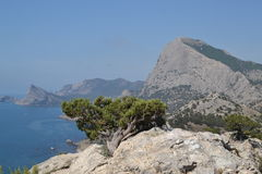 The view from the mountain to the sea. The village of Sudak in the Crimea royalty free stock photography