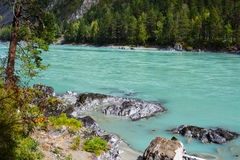 View of the mountain turquoise river stock image
