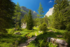 View of the mountain valley Royalty Free Stock Photo