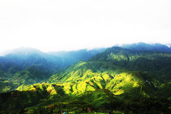 View of mountain in Vietnam. Beautiful view of mountain in Vietnam Stock Photography