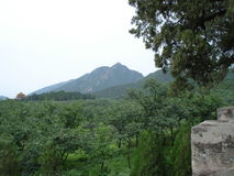 View of Mountain Stock Image
