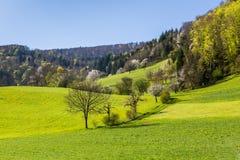 View of Mountain Wasserflueh, Switzerland Royalty Free Stock Photos