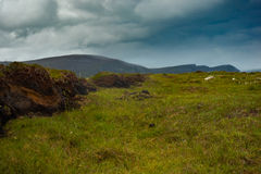 View of mountains from bog land on Achill island, Co. Mayo. View of mountains from bog land on Achill island, Co. Mayo, Ireland royalty free stock images