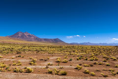 View of the mountains and desert lanscape around the altiplanic lagoons in the Atacama Desert, Chile Stock Photography