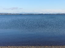 The view of mountains far away from Drayton Harbor. Crystal clean water in Drayton Harbor looking toward mountains and City of Blaine, Washington on a fall day Royalty Free Stock Image