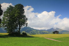 View at mountains of First, Grindelwald valley in  Royalty Free Stock Photo