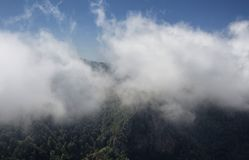 View of mountains, forest in fog royalty free stock photo
