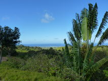 View Of Mountains And Indian Ocean Stock Image