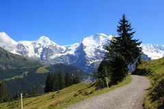 View at mountains, Jungfrau and Moench with hiking path in Switzerland. View at hiking path with the mountains, the Jungfrau and Mönch at the background stock photos