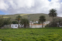 View of mountains and palm trees Betancuria Fuerteventura Canary Royalty Free Stock Photography