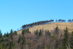 View of mountains peak. View of mountains. Autumn colors and blue sky. Beskid Śląski, Poland Stock Photo