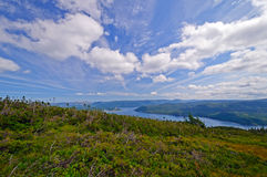 View from a Mountaintop in summer Royalty Free Stock Photography