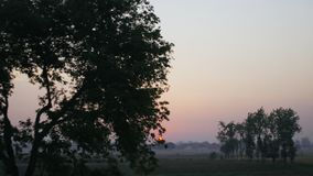 Traveling on train in india. View from moving train, indian landscape field and trees at sunset stock footage