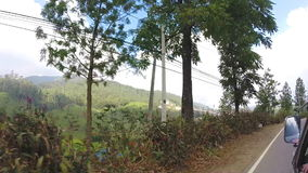 View from moving vehicle of tea plantations in the foothills on the roads of Sri Lanka. stock footage