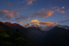View of Mt. Annapurna III at Sunrise from Chomrong, Nepal. Stock Image