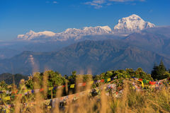 View of Mt. Dhaulagiri 8,172m. at Sunrise from Poon Hill, Nepal. View of Mt. Dhaulagiri 8,172m. at Sunrise from Poon Hill, Nepal royalty free stock images