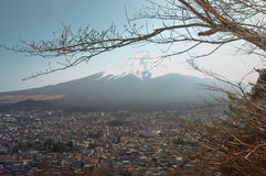 View of Mt.Fuji-Cityscape with branches of tree on foreground Stock Photography