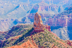 View at Mt Hayden in North Rim Of The Grand Canyon Stock Image